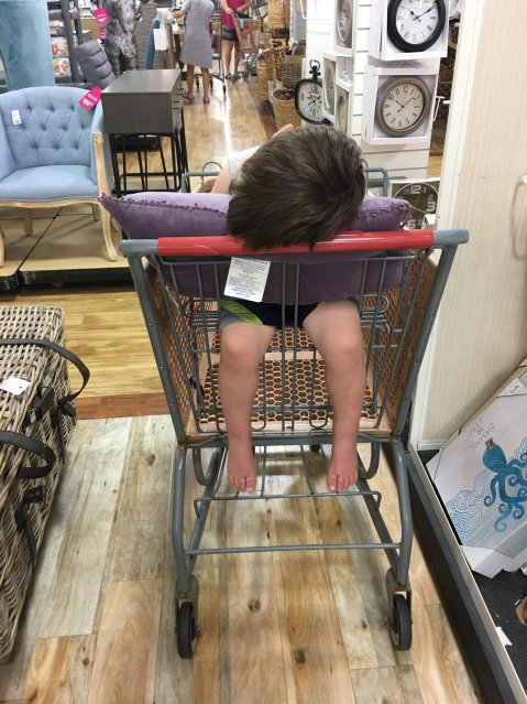 Adler asleep while we shopped at Home Goods